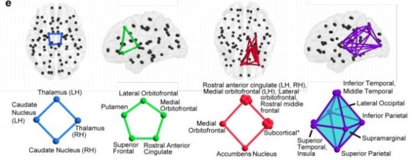 neural-cycles